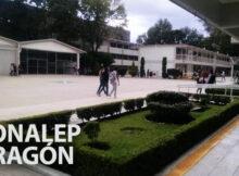 Conalep de Aragón